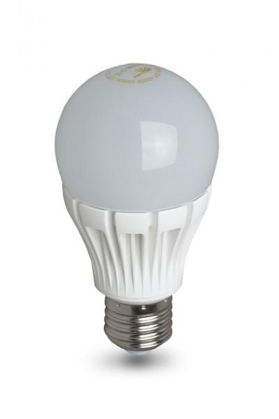 LED Birne 6W